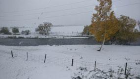 Frozen Mongolia