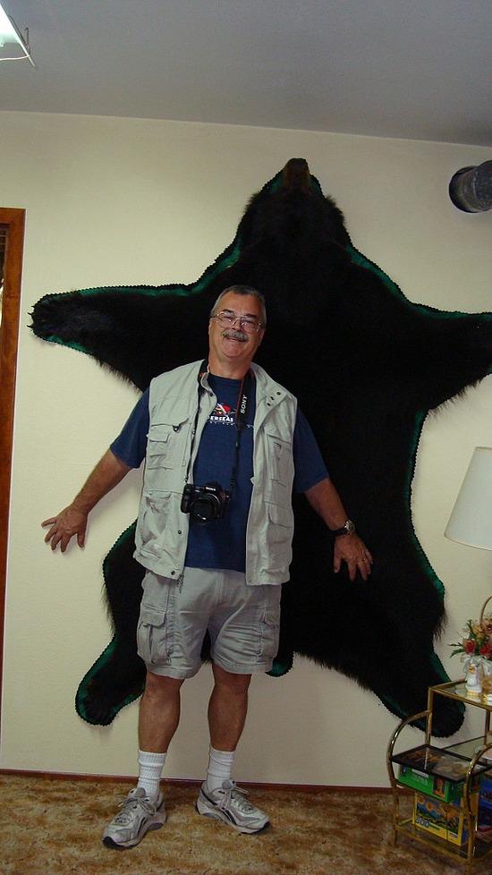 North Pole Friend's Black Bear Skin