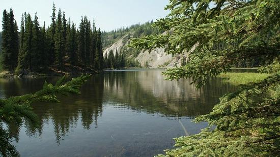 Denali--Horseshoe Lake