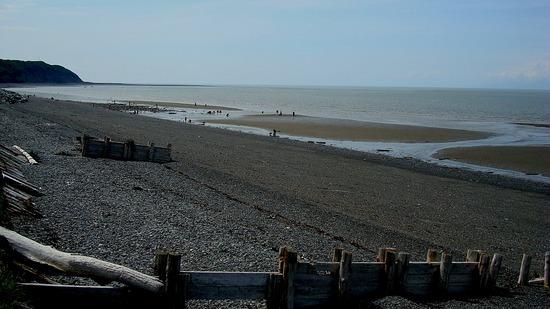 Low Tide Clamming - Ninilchik