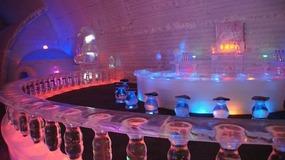 Bar - Ice Museum