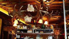 Moose Antlers Chandellier