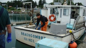 Boat - Dungeness Crab