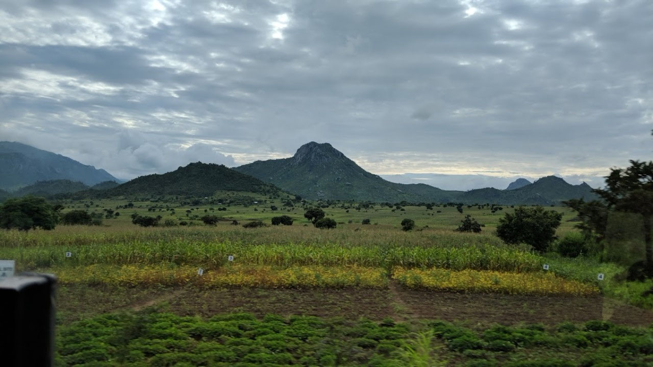 Beautiful landscape between Lilongwe and Blantyre