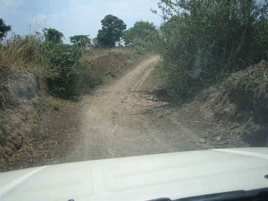 The rough road in the bush near Mapoko