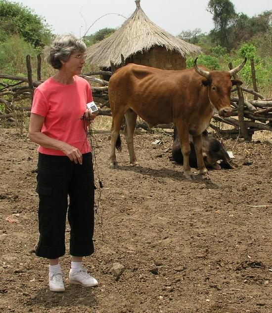 Bev admires heifer