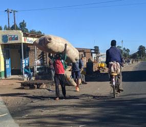 Between Blantyre and Lilongwe